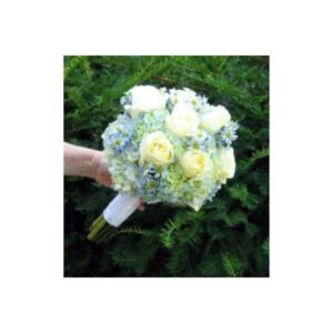 Blue Hydrangea Cream English Rose