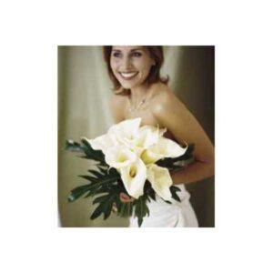 Cream Arum Lilies Tied