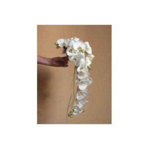 Phaloenopsis Shower Bouquet