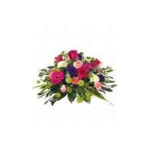 Posy Arrangements - Bright